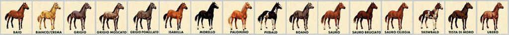 fila_cavalli