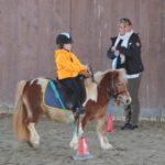 Fiona_pony252b