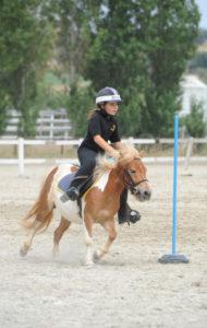 bambina_pony
